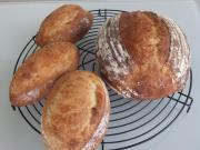 泉南市新家 パン教室『bread-daisuki』