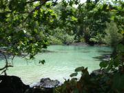 ハワイで旅行会社勤務、べたんの徒然ブログ