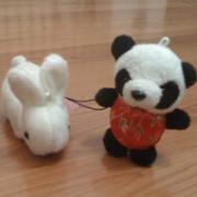 大連(中国)のWebデザイン会社で働く社長のブログ