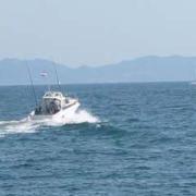 三河湾・伊勢湾のマイボートフィッシング(釣果情報)
