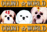 ☆OGUNI・WORLD☆