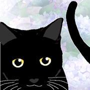 黒猫BFNの徒然なる日々