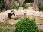全国温泉巡り 千湯記のブログ