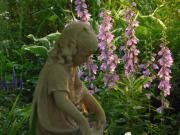 ガーデニング・花苗・季節と共に日々を綴る