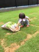 はるにっき 育児と庭とハンドメイド