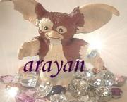 arayanのデコブログ