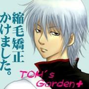 TOM's Garden+