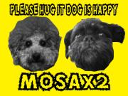 MOSAx2