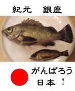 『釣ったら食べる!』