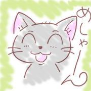 のんびし猫心地