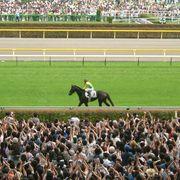 浅次郎のどんぶり競馬予想〜スピード指数と回収率〜