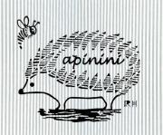apinini staff blog