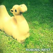 ROBINS-NEST