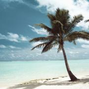 バリ島ニュース