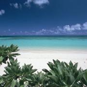 沖縄ダイビング&旅行のことならベリーにお任せ!