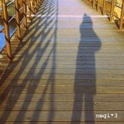 Footprint of negi*