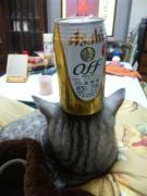 酒と涙と男とメス猫・・・
