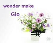 ワンダー・メイク GIOの美ログ