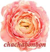 韓国子供服のchachabonbonのショップブログ