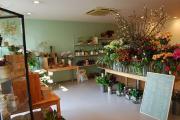 花と暮らす店 木花 Mocca