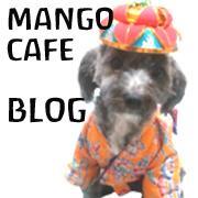 石垣島 Mango cafe BLOG