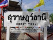 タイ、スラタニ情報