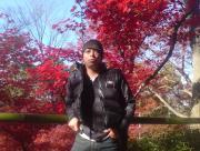 京都で暮らし・宇治市で暮らし・大工さんブログ