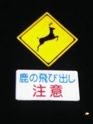 奈良でごはん