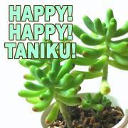 HAPPY!HAPPY!TANIKU!