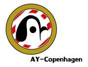 AY-COPENHAGEN ハンドボール化するサッカー