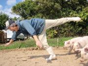 南アルプス放牧豚の「ぶぅふぅうぅ農園」