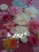 anaのブログ