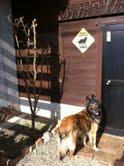 うちのログハウスは、犬小屋か!?