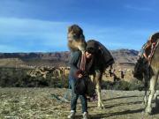 砂漠とカスバとオアシスで・・・ベルベル人との生活