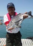 火曜と木曜のダゴチン釣り師