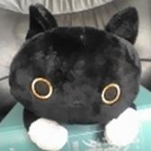 ときどき黒猫