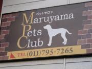 円山ペットクラブの日常