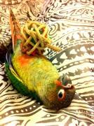 鳥のいる生活。