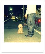 犬服・犬用品の紹介ブログ・sweetdog