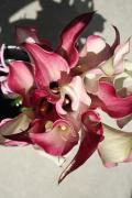 なかむーの花仕事snuggeryブログ