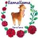 llamallamaさんのプロフィール