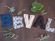 Bevalのブログ