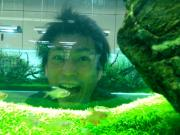ペロリの水草ランド2