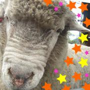 須坂市動物園へ行こう♪ どうぶつさんに会ったよ♪