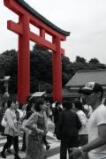 taizo.com