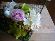 HANA HANA Cafe