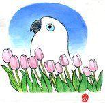 365Days〜鳥と花と青い空