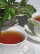 紅茶大好き!の話