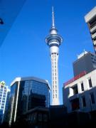 JTCでござる。NZ情報満載!