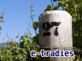 e-tradies